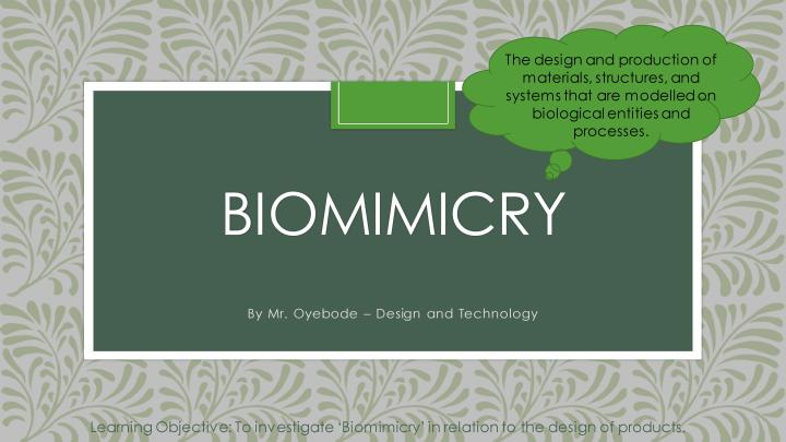 Year 8 Biomimicry Lesson-page-001