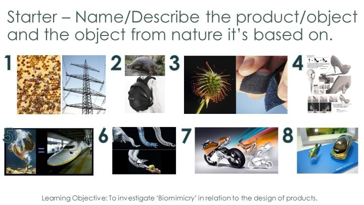 Design technology resources introduction to biomimicry - Design and technology lesson plans ...
