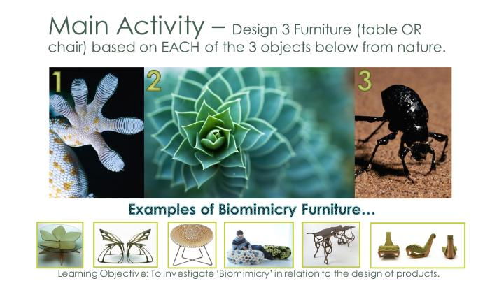 Year 8 Biomimicry Lesson-page-006